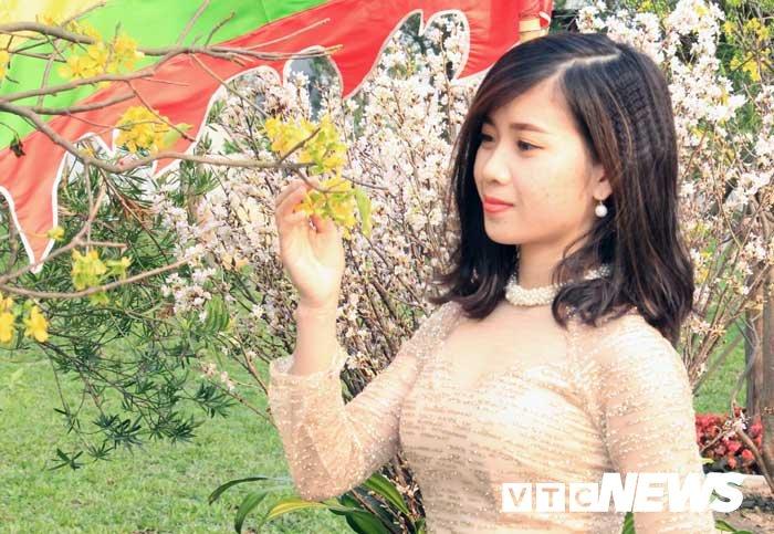 Anh: Chiem nguong hoa anh dao Nhat Ban, mai vang Yen Tu dua sac hinh anh 8