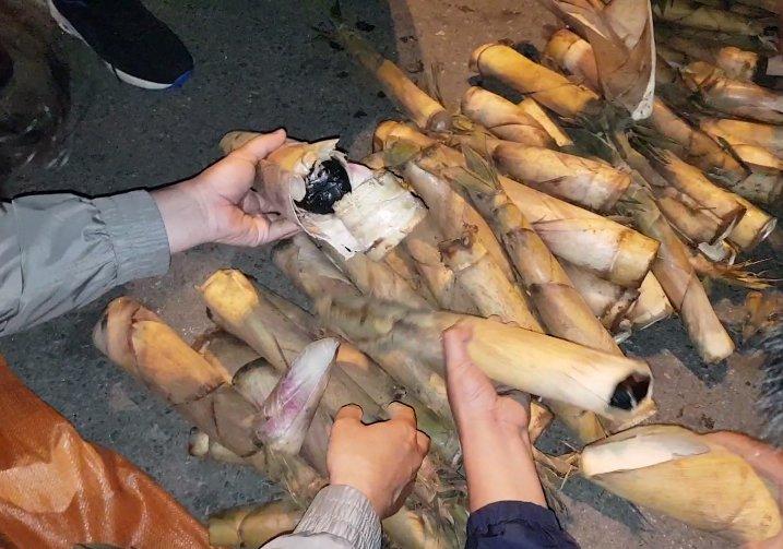 Giau ma tuy trong than mang van bi Hai quan Quang Ninh lat tay hinh anh 1