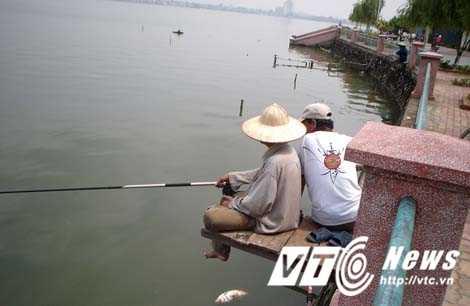 Nhung chuyen thu vi ve loai 'khung long' an minh duoi day Ho Tay hinh anh 2