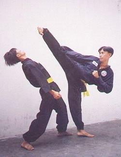 Ly ky the vo bien ao giet cop cua vo su Viet mon phai 'Vo Tong da ho' hinh anh 4