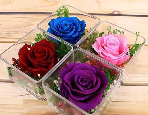 Qua tang Valentine: Hoa hong 10 trieu dong, chocolate 2 trieu dong hinh anh 2