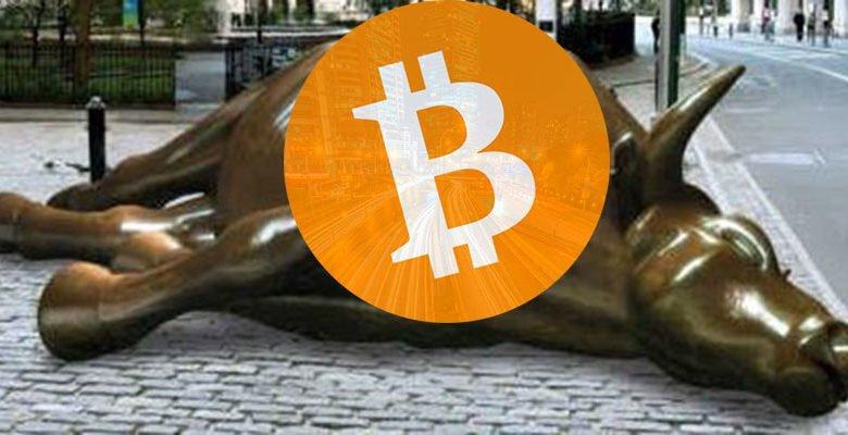 Gia Bitcoin hom nay 14/11: Dang tang dien cuong sau chuoi ngay giam ky luc hinh anh 1