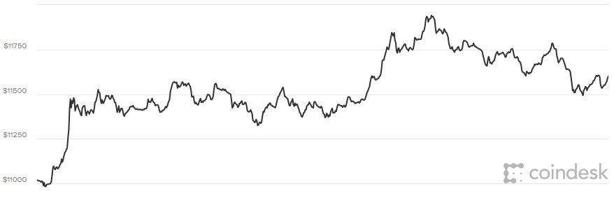Gia Bitcoin hom nay 29/1: Thi truong tien ao dang bi tay chay hinh anh 1