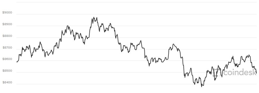 Gia Bitcoin hom nay 14/2: Vuc day kho khan hinh anh 1