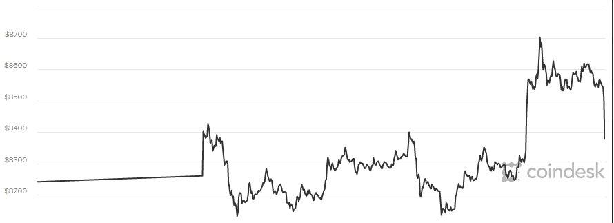 Gia Bitcoin hom nay 20/3: Tang manh sau nhung song gio hinh anh 1
