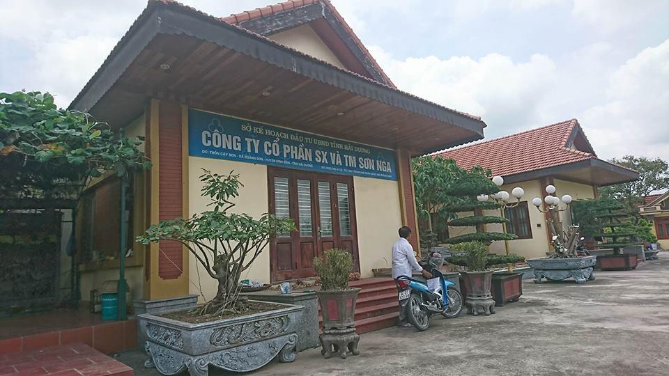 'Biet phu' rong ca ngan met vuong xay tren dat de o Hai Duong hinh anh 2