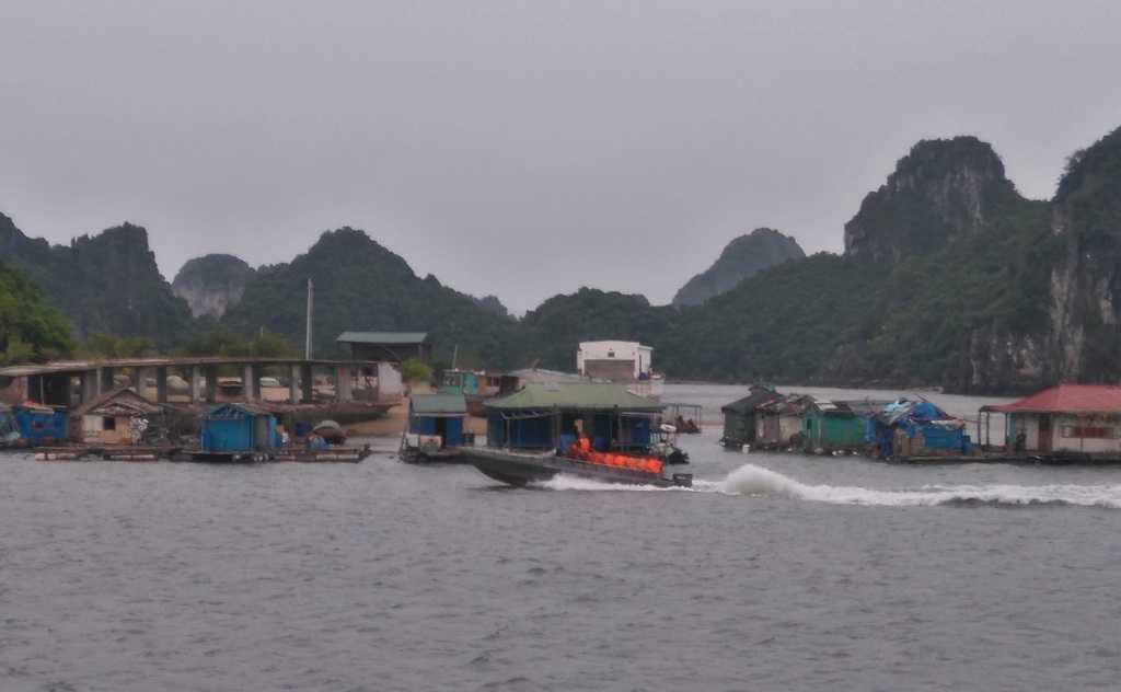 Tranh sieu bao Sarika, Quang Ninh hoi ha so tan khach du lich vao bo hinh anh 4