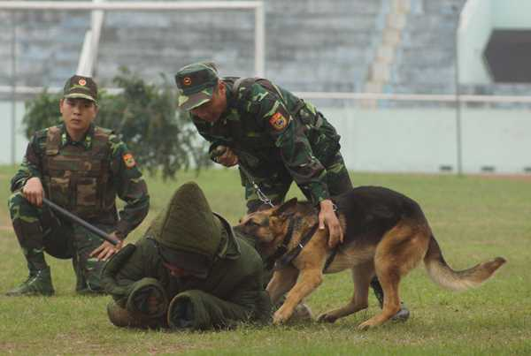 Xem bo doi bien phong trinh dien cong phu tuyet dinh, dieu khien cho chien dau hinh anh 14