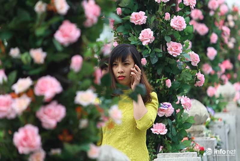 Le hoi hoa hong Bulgaria: Quang cao khac xa thuc te hinh anh 5