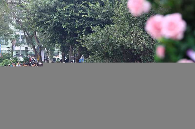 Le hoi hoa hong Bulgaria: Quang cao khac xa thuc te hinh anh 3