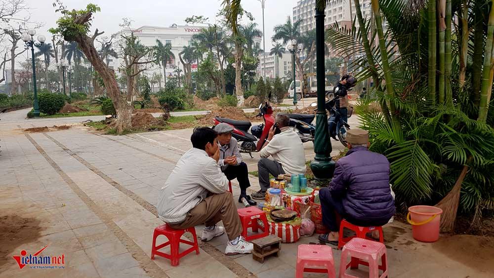 Hang tram cay co thu bi di doi khoi manh dat 'vang' o Thai Binh hinh anh 10