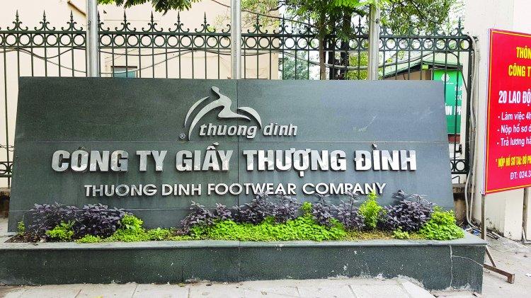 So huu dat vang, co phieu giay Thuong Dinh van e am hinh anh 1