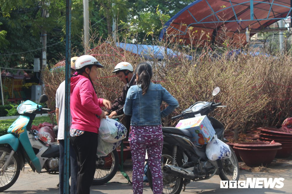 Anh: Sai Gon ruc ro sac hoa, cay canh ngay can Tet hinh anh 2