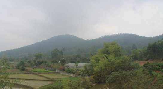 Thu tuong yeu cau Vinh Phuc lam ro 6 van de 'nong' hinh anh 2