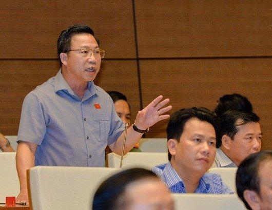 Dai bieu hoi Tong Thanh tra Chinh phu: 'Cac dong chi ngam vu nay den bao gio?' hinh anh 3