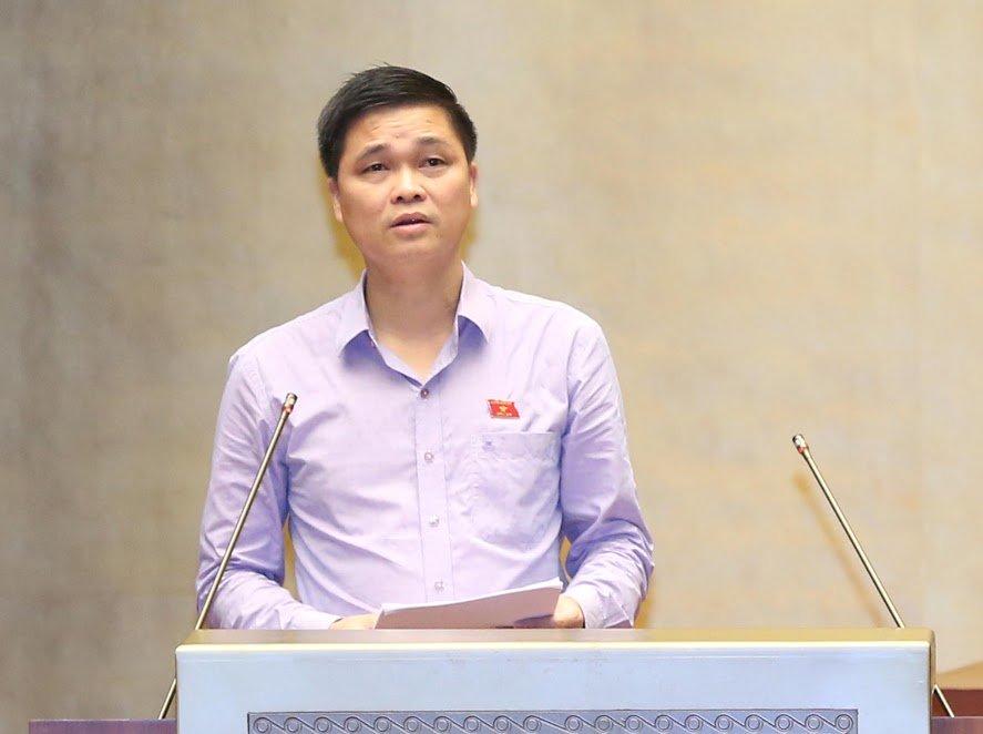 Dai bieu hoi Tong Thanh tra Chinh phu: 'Cac dong chi ngam vu nay den bao gio?' hinh anh 1
