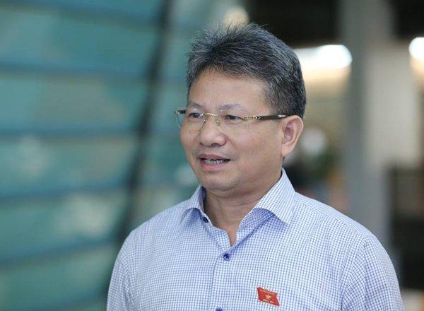 Dai bieu Quoc hoi: 'Gia la gia, phi la phi, khong the lan lon duoc' hinh anh 1