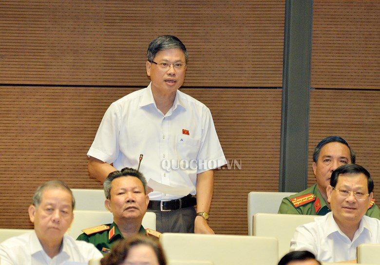 Dai bieu Nguyen Sy Cuong: Toi nghi chinh phan tich cua dai bieu Luu Binh Nhuong nham lan hinh anh 2