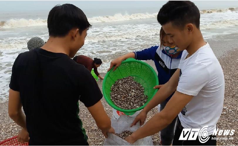 Anh: Dan Ha Tinh do xo vot 'loc bien', kiem hang chuc trieu dong hinh anh 2