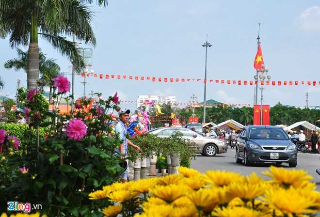Da Nang, Quang Ngai keu goi cong chuc 'giai cuu' hoa Tet giup dan hinh anh 2