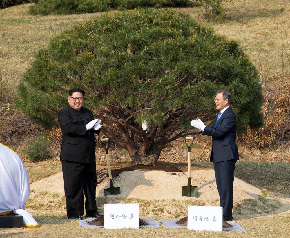 Hai nhà lãnh đạo trồng cây lưu niệm tại khu vực an ninh chung, với đất và nước được lấy từ hai bên.