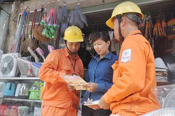 EVN HANOI: Dam bao an toan hanh lang luoi dien cao ap trong mua mua bao 2016 hinh anh 3
