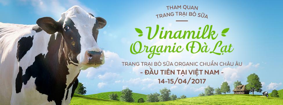 Cung gia dinh Hoang Bach vi vu toi trang trai Vinamilk Organic hinh anh 5
