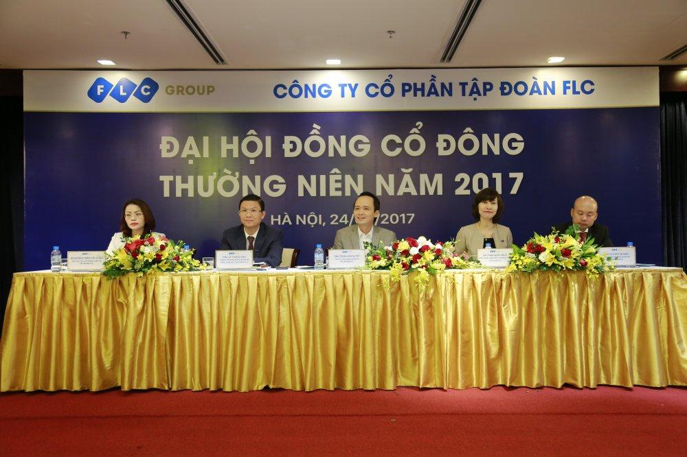 FLC thong qua ke hoach loi nhuan 1.230 ty dong nam 2017 hinh anh 2