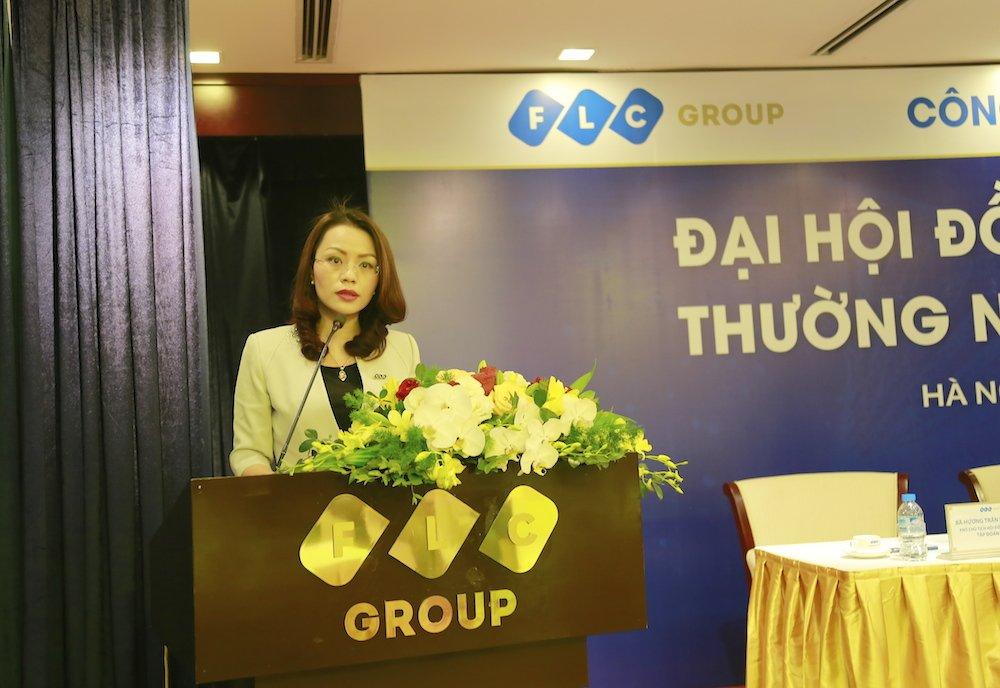 FLC thong qua ke hoach loi nhuan 1.230 ty dong nam 2017 hinh anh 4