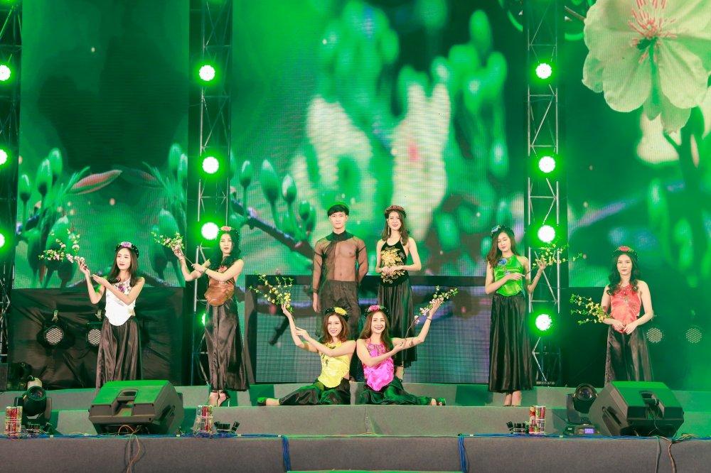 'Chao 2018' - Halong Marine Plaza bung no voi JustaTee, Giang Hong Ngoc, Hanh Sino hinh anh 10