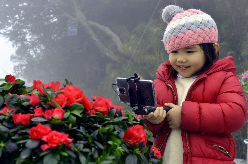 Le hoi hoa do quyen lan thu 2 duoc to chuc tai Sun World Fansipan Legend hinh anh 3
