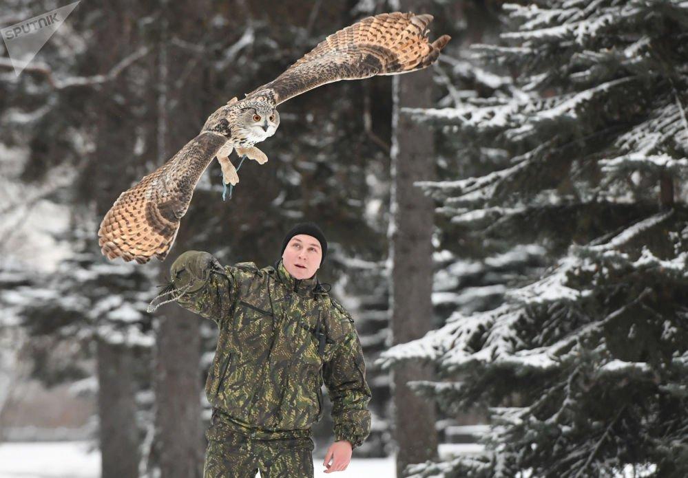 Anh: Biet doi chim san moi bao ve Dien Kremlin hinh anh 4