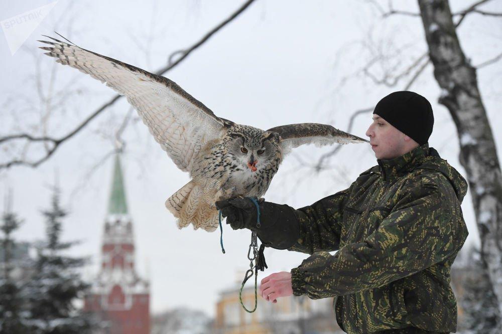 Anh: Biet doi chim san moi bao ve Dien Kremlin hinh anh 9