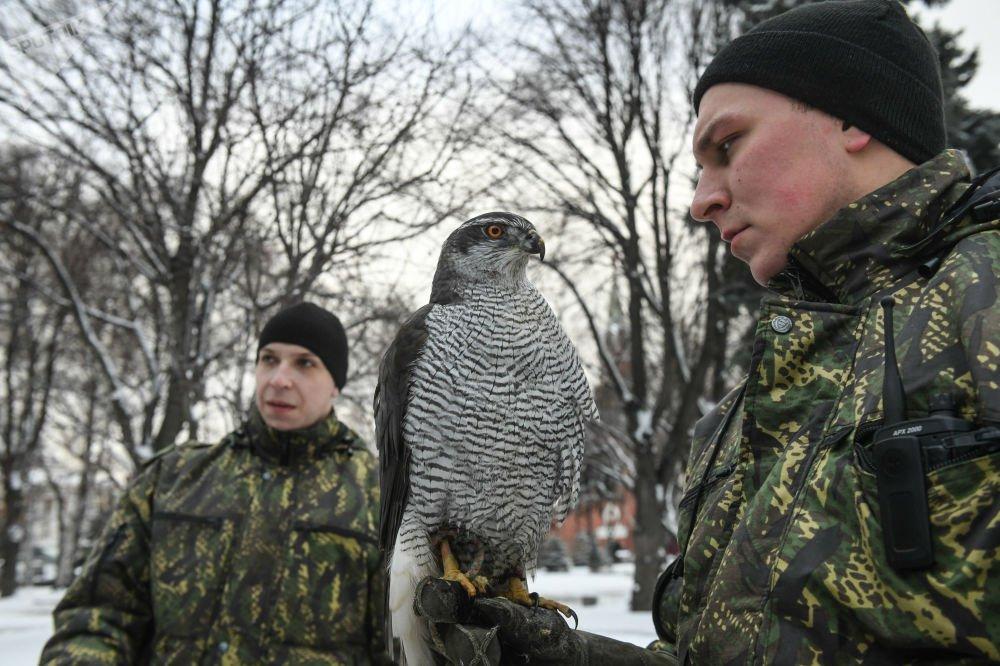 Anh: Biet doi chim san moi bao ve Dien Kremlin hinh anh 6