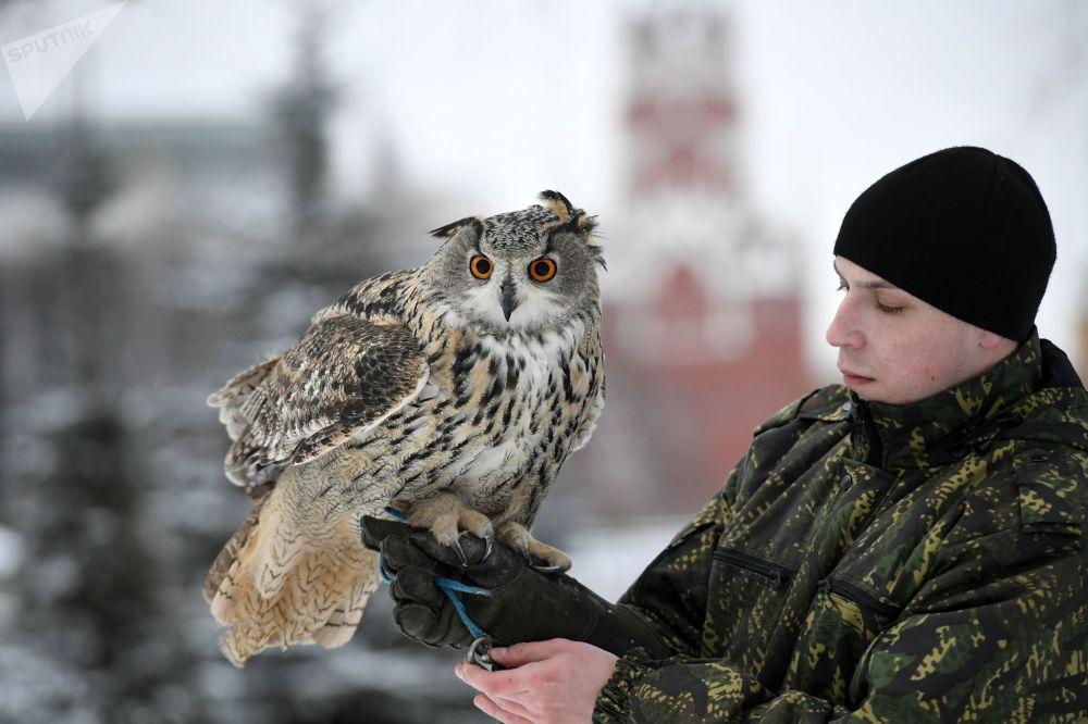 Anh: Biet doi chim san moi bao ve Dien Kremlin hinh anh 10