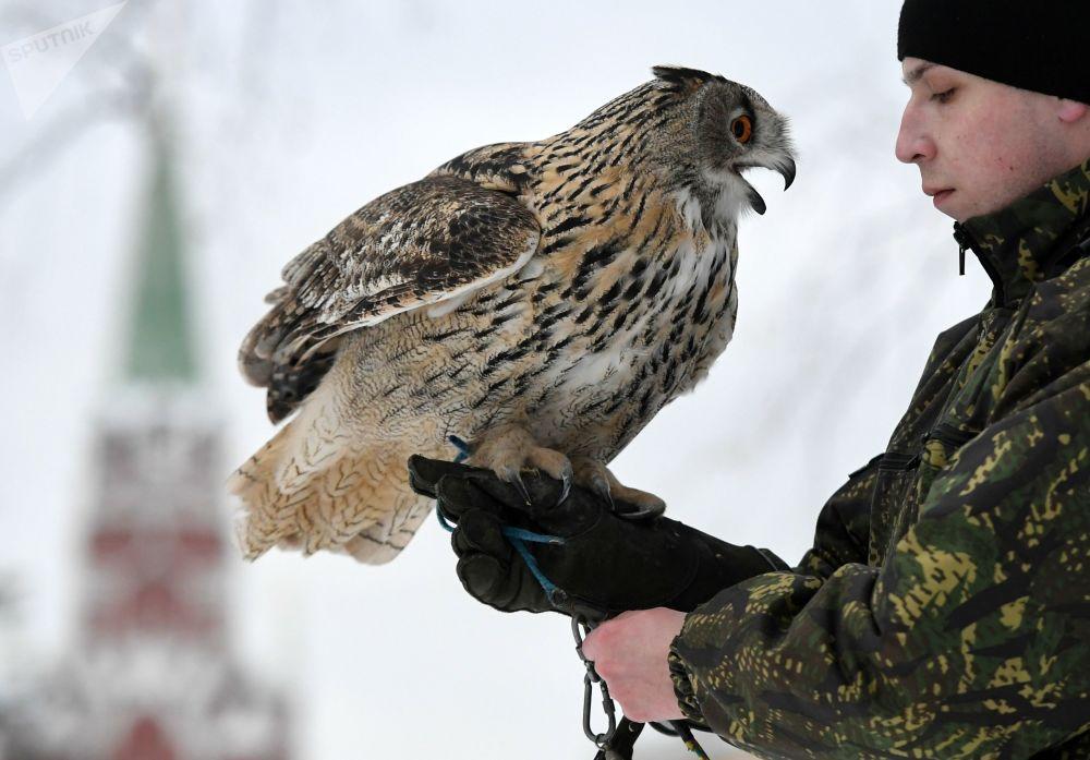 Anh: Biet doi chim san moi bao ve Dien Kremlin hinh anh 12