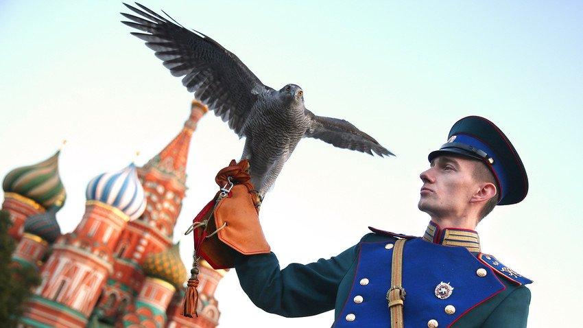 Tai sao Dien Kremlin co biet doi chim san moi? hinh anh 1
