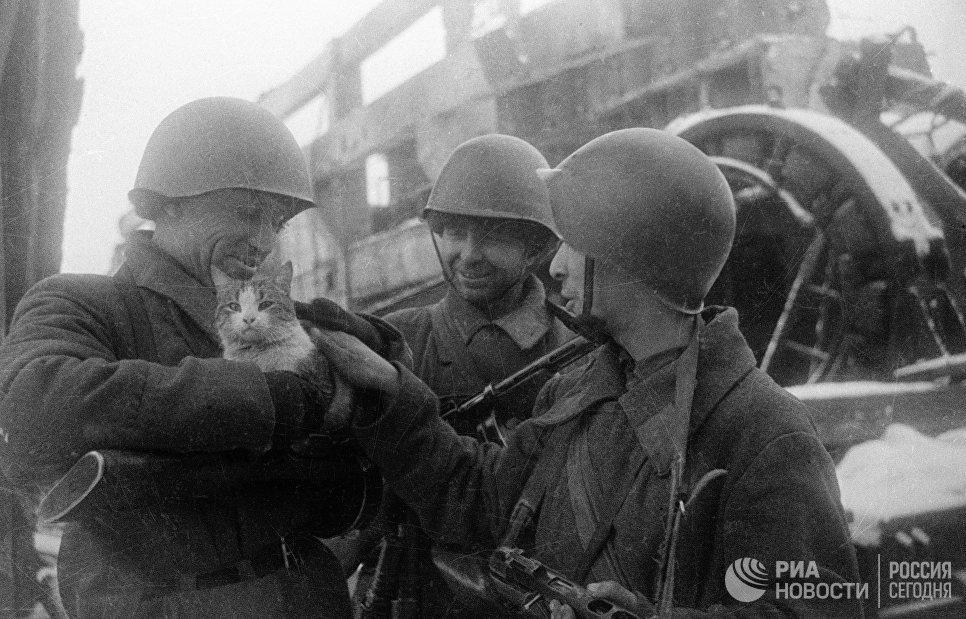 Nhung hinh anh hiem ve Chien thang Stalingrad cach day 75 nam hinh anh 16
