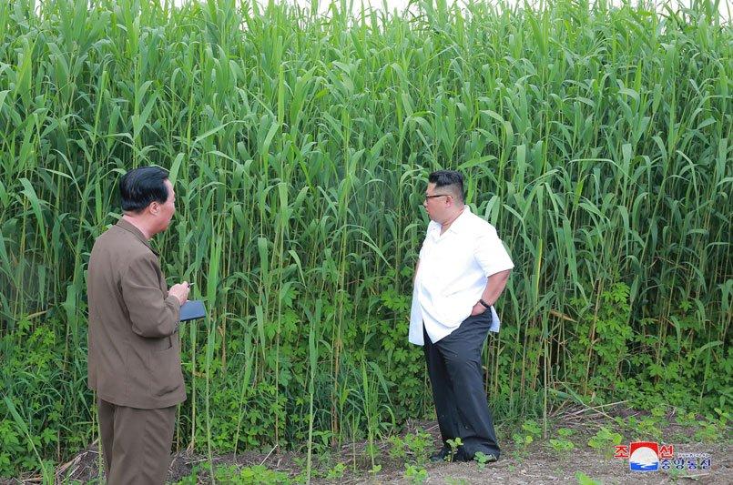 Anh: Ong Kim Jong-un thi sat don vi quan doi va khu vuc giap bien gioi Trung Quoc hinh anh 6