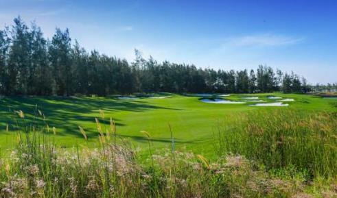 Chiem nguong Vinpearl Golf Nam Hoi An: Noi dang cai giai WAGC The gioi hinh anh 6