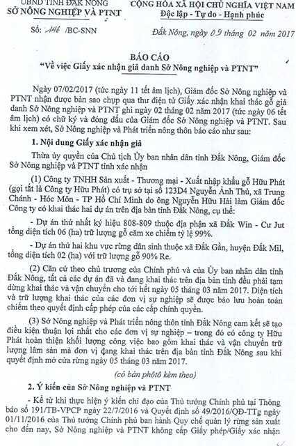 Gia mao giay cua So Nong nghiep de khai thac go trai phep hinh anh 1