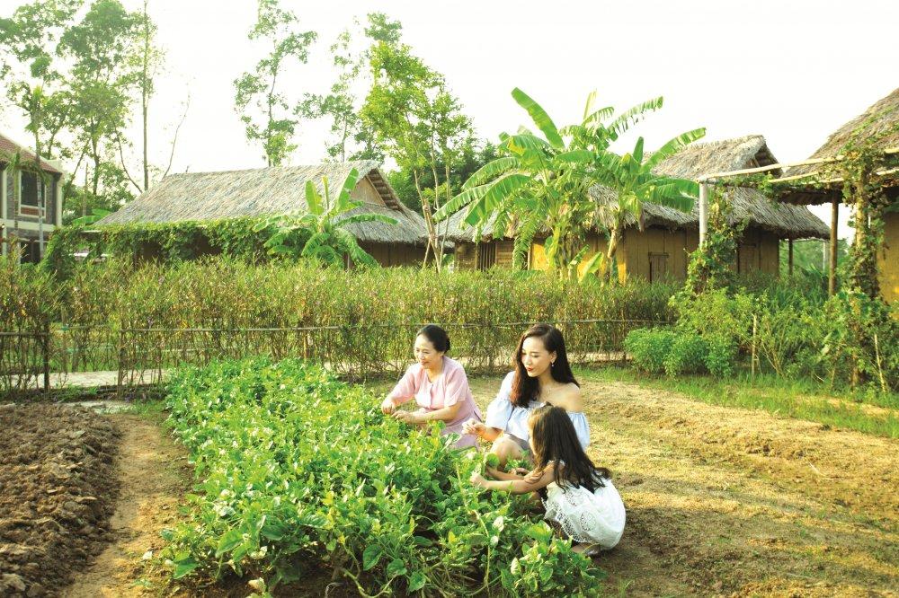Kham pha diem nghi duong nang tam cuoc song danh cho nguoi cao tuoi hinh anh 5