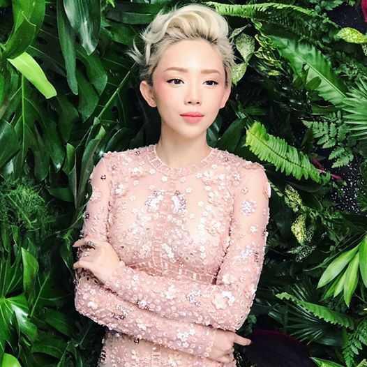 Phan Anh, Thao Van, Cuong Do la chia se dieu thieng lieng don nam moi 2017 hinh anh 3