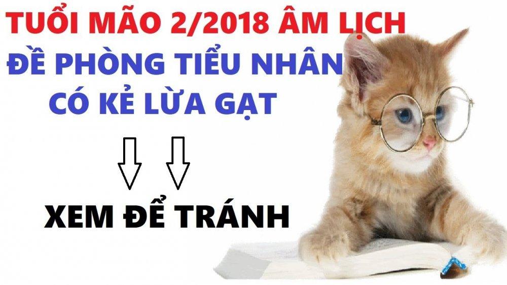 Su nghiep cua nguoi tuoi mao trong nam 2017 hinh anh 1
