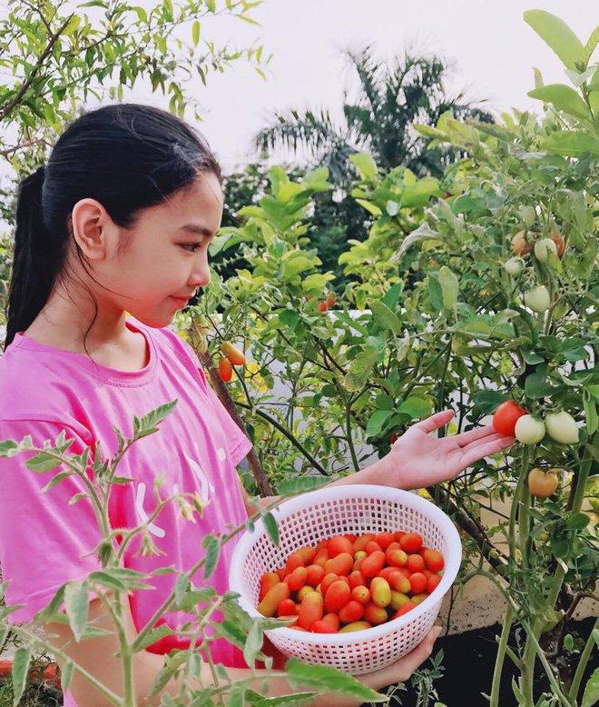 Con gai ruou cua MC Quyen Linh: Cang lon cang xinh, duoc du doan la hoa hau tuong lai hinh anh 13