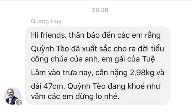 Pham Quynh Anh, Quang Huy chao don con gai thu hai hinh anh 1