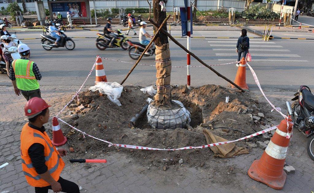 Chan 1 chieu duong Cat Linh de thi cong, xe co un u gio cao diem hinh anh 11