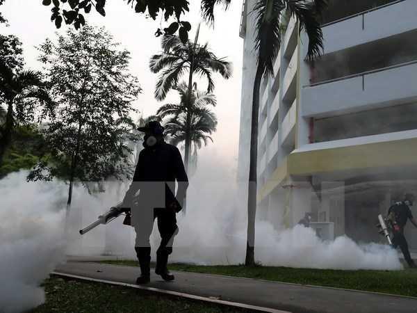 Virus Zika co nguy co lan rong o chau A -Thai Binh Duong hinh anh 1