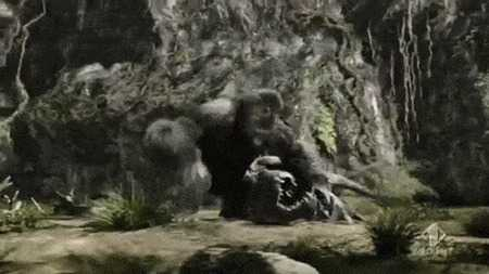 King Kong trong phim Holywood: Lieu co ton tai khi dot lon den vay? hinh anh 5