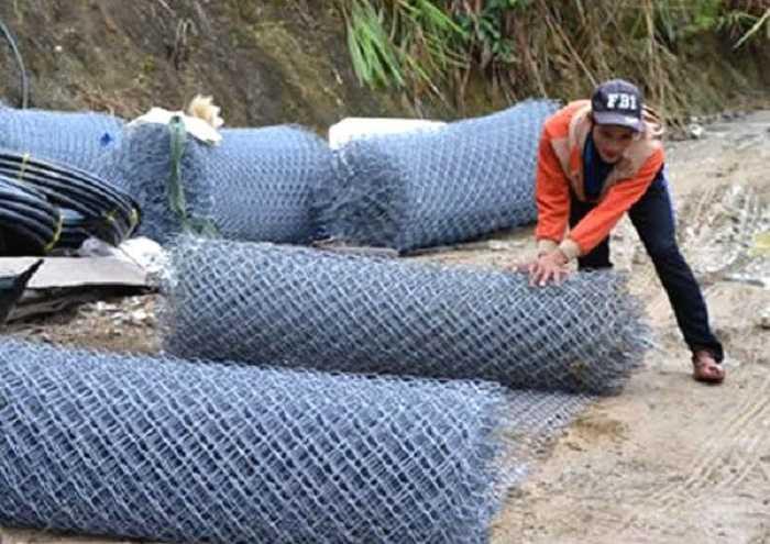 Trom 500 goc sam Ngoc Linh: Su dung cho nghiep vu, may bao dong bao ve vuon cay tien ti hinh anh 1